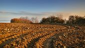 picture of calvary  - autumn scene with freshly plowed field and calvary - JPG