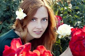 picture of auburn  - Young caucasian woman with auburn hair sitting in the rose garden in the sunset light - JPG