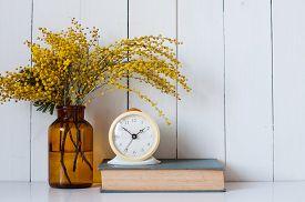 image of mimosa  - Home decor - JPG