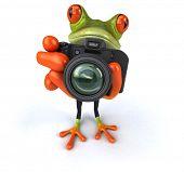 stock photo of megapixel  - Fun frog - JPG