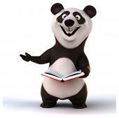 stock photo of pandas  - Fun panda - JPG