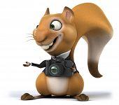stock photo of megapixel  - Fun squirrel - JPG
