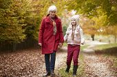 stock photo of granddaughters  - Grandmother Walking Along Autumn Path With Granddaughter - JPG