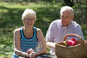 pic of nic  - Lovely elderly couple on a summer pic nic in the park - JPG