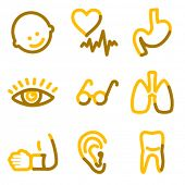 Medicine 2 icons, gold contour series