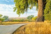 summer on the Poudre River Trail in northern Colorado near Windsor. It is a  paved bike trail extend poster