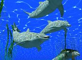 stock photo of cetacea  - dolphins under water image with sunlight effect  - JPG