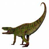 Batrachotomus Dinosaur Tail 3d Illustration - Batrachotomus Was A Carnivorous Archosaur Dinosaur Tha poster