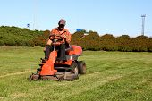 image of grass-cutter  - Mature man driving grass cutter in a sunny day - JPG