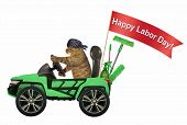 The Cat In A Bandana Is Driving A Green Car With A Red Banner  Happy Labor Day . White Background. poster