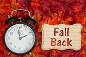 Daylight Savings Time Message, Some Fall Leaves And Retro Alarm Clock With Text Fall Back On Wood Fr poster