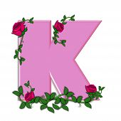 stock photo of climbing roses  - The letter K in the alphabet set Blushing Roses is soft pink - JPG