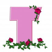 pic of climbing roses  - The letter T in the alphabet set Blushing Roses is soft pink - JPG