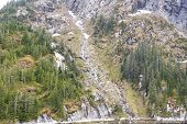 Snowmelt River Flowing Down Mountain Among Firs poster