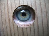 stock photo of peeping-tom  - eye looking through hole in a wooden plank - JPG