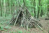 picture of teepee  - Indian Teepee structure in the green forest - JPG