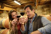pic of wine cellar  - Oenologists in wine cellar tasting red wine - JPG