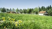 stock photo of chalet  - Green meadow with flowers and chalet on the background - JPG