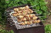 picture of kebab  - Pork Shish kebab on Fire - JPG