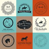 stock photo of horse-riders  - Equine vintage vector logo - JPG