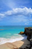 foto of bottom  - Topical Palms at Bottom Bay , Barbados, Caribbean