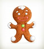 picture of ginger man  - Gingerbread man - JPG