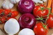 image of scallion  - Red onion - JPG