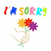 pic of apologize  - I - JPG