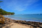 foto of greater antilles  - beautiful bay of Bathsheba at eastcoast of Barbados - JPG