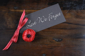 stock photo of lapel  - Lest We Forget Red Flanders Poppy Lapel Pin Badge for November 11 Remembrance Day appeal on dark recycled wood background - JPG