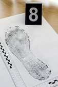 image of criminology  - Footprint shoe protector disclosed during the examination - JPG