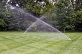 pic of sprinkling  - Lawn irrigation system with cross pattern of mowing - JPG