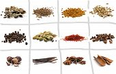 stock photo of fenugreek  - Set of different spices - JPG