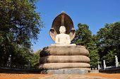 picture of polonnaruwa  - Buddha in Polonnaruwa temple  - JPG