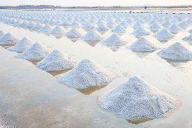 stock photo of crystal salt  - Heap of sea salt in original salt produce farm make from natural ocean salty water preparing for last process before sent it to industry comsumer - JPG