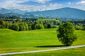 image of bavarian alps  - Road in pastoral idyllic german countryside with Bavarian Alps in background on beautiful summer day - JPG