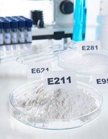picture of decomposition  - Preservatives substances that are added to products such as foods - JPG
