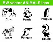 6 b/w vector animals icons. Panda, cow, penguin, zebra, skunk in fancy poses.