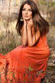 Постер, плакат: женщина в оранжевое платье на природу