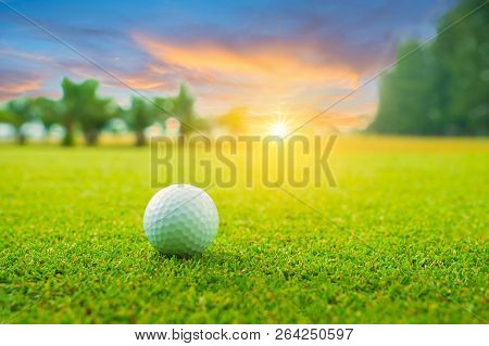 Golf Ball On Green In