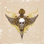 picture of grotesque  - vector illustration of skull with wings on grunge background - JPG
