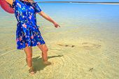 A Tourist Woman Pointing At Guitarfish Or Rhynchobatus Australiae At Shell Beach In Shark Bay Area.  poster