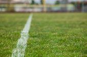 Постер, плакат: Белая линия на футбольное поле с зеленой травы