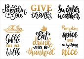 Sweater Weather, Give Thanks, Pumpkin Pie, Gobble Till You Wobble Etc., Vector Handwritten Calligrap poster