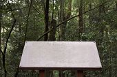 White, Old Guide Post With Copy Space In Forest Background , Blank Sign Post, Nature Background. poster