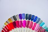 Palette With Swatches Of Nail Polish. A Collection Of Samples Of Varnish For Manicure. Well-groomed  poster