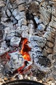 Closeup Of Burning Firewood With Charcoal, Hot Ashes And Cinder, Shallow Depth Of Field Fire Hole. T poster
