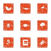 Zoological Icons Set. Grunge Set Of 9 Zoological Vector Icons For Web Isolated On White Background poster