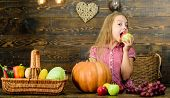Basket Full Fresh Vegetables Harvest. Gathering Harvest Traditions. Harvest Festival Concept. Child  poster
