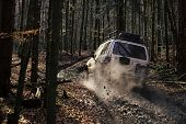 Crossover Driving With Cloud Of Smoke, Back View. Dirty Offroad Car With Fall Forest On Background O poster